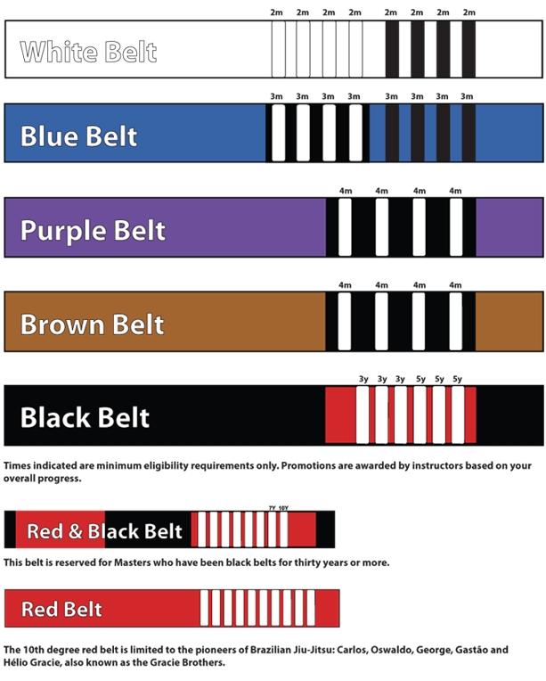 brazilian jiu jitsu belt ranking BJJ Belts